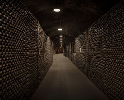 Count Ducco cellar Wine Tour